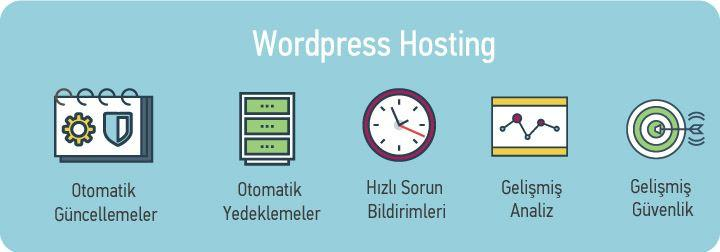 wordpress hosting nedir